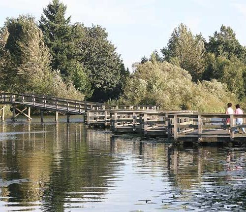 Abbotsford Lake